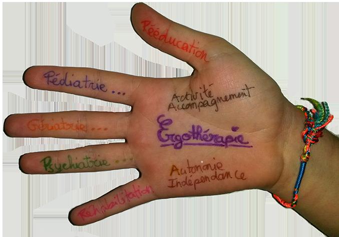 Main ergothérapeute